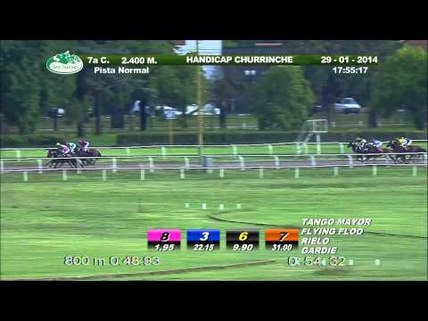 Vidéo de la course PMU HANDICAP CHURRINCHE