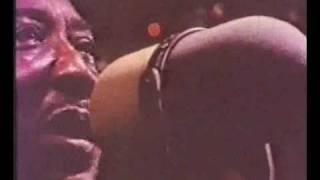 Muddy Waters - Hoochie Coochie Man (1970)