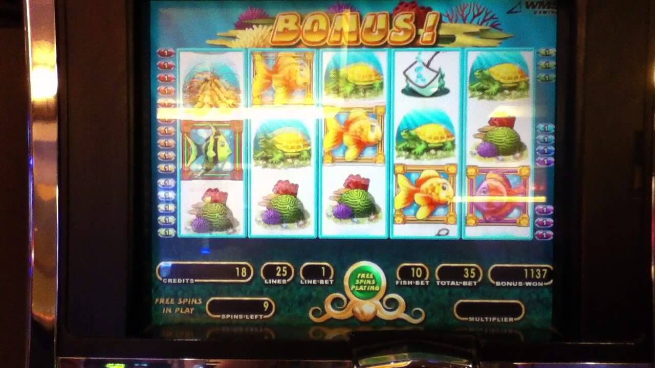 Goldfish video slot machine for sale