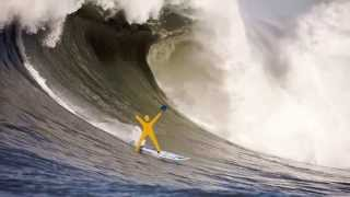 Catch the AVID Wave VIDEO