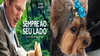 Cachorrinha Kristal Assistindo o Filme Sempre ao Seu Lado view on youtube.com tube online.