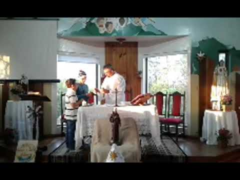 Santa Missa | 29.09.2020 | Terça-feira | Padre Paulo Sérgio Mendes da Silva | ANSPAZ