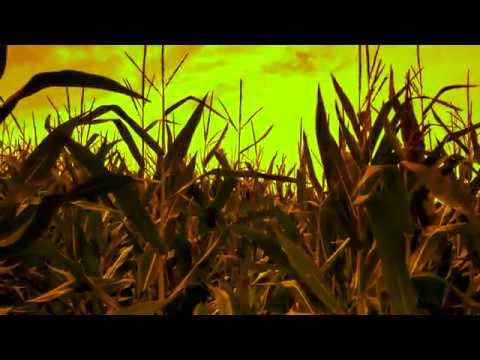 Subcortic - Lost In Life - szöveges videó