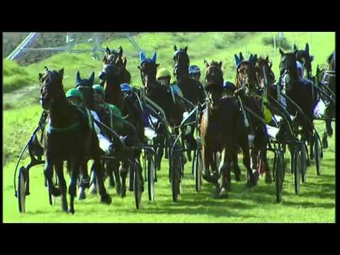 Vidéo de la course PMU TROPHEE VERT - PRIX JOSEPH BEAUMONT