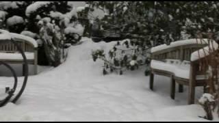 ADI & KARINA Na Płatkach śniegu