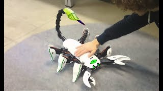 8 Coolest INSECT Robot Toys which Actually Exist ✅