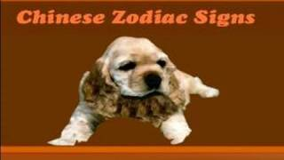 Chinese Zodiac Sign Meanings : The Dog Chinese Zodiac Sign