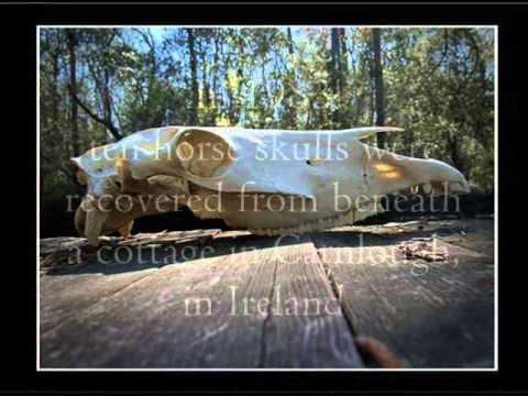 Pagan Horse Skulls, Ritual Sacrifice & Eating Equine Flesh
