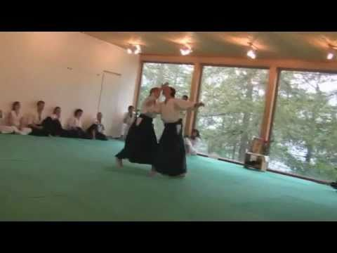 Evolutionary Aikido, Aikido Montreux, Embodiment of Principles and Perspectives