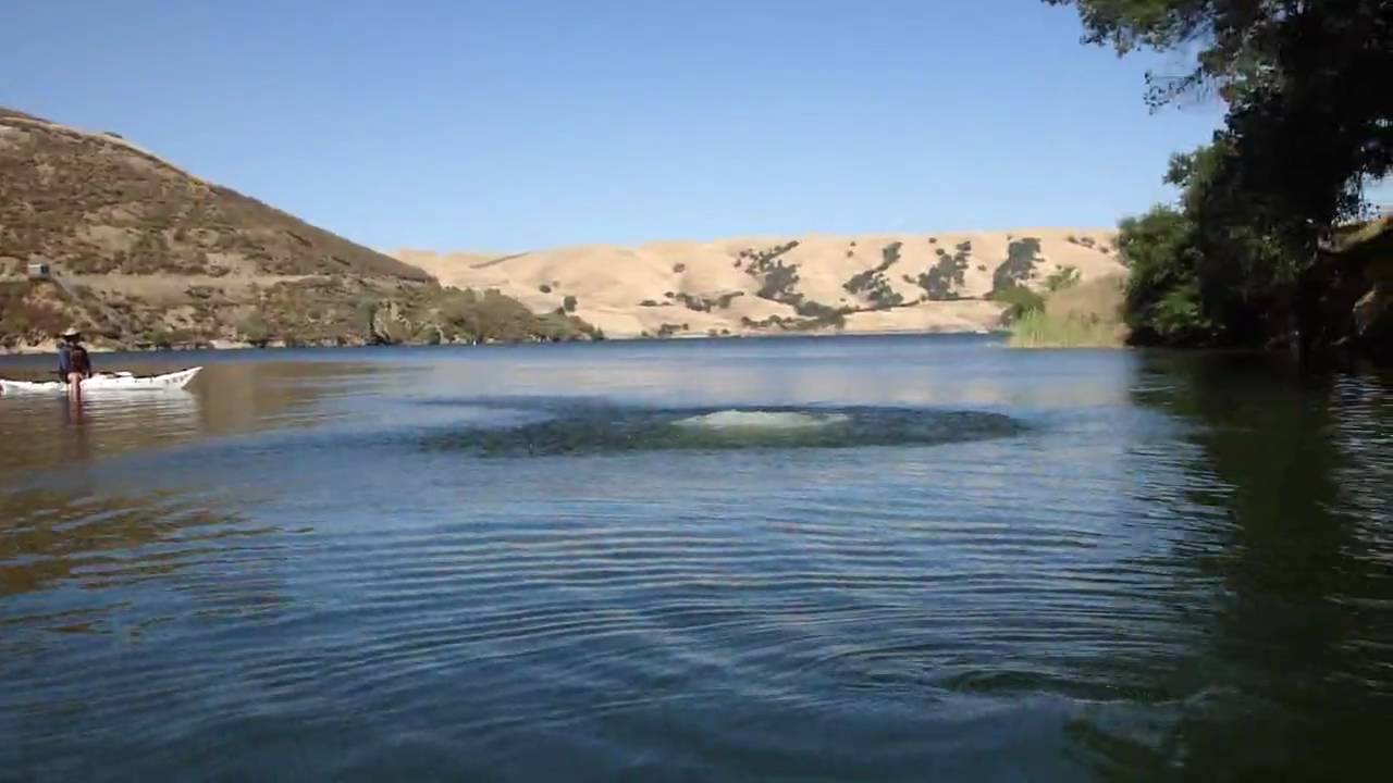 Tree swing at lake del valle livermore ca youtube for Lake del valle fishing report