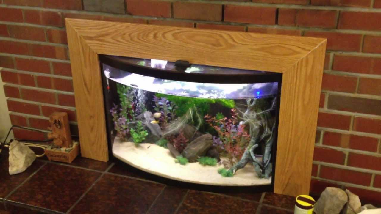 Cleaning Bow Front Aquarium Glass