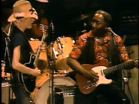 Live @ The Chicago Fest (1981)