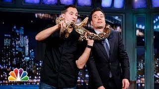 Jeff Musial: Baby Kangaroo, Cougar, Boa Constrictor Part 1 (Late Night with Jimmy Fallon)