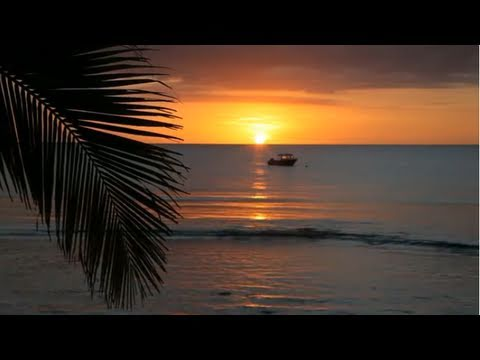 Relaxing Piano Music - Nature Scenes Meditation, Google+ https://plus.google.com/117742457115480021491 Facebook https://www.facebook.com/ScenicVideos Relaxing Music Therapy For Stress Relief Relaxing music ...