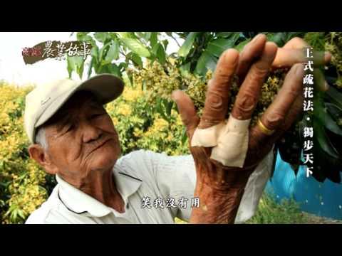 高雄農業故事館-荔枝(影片長度:15分33秒)