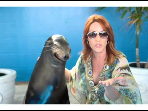 Spring Into Paradise with Sea Lions at Atlantis Bahamas