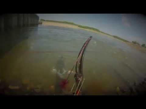 Bowfishing Barkley and Kentucky Dam (Bowfishing Asian Carp)