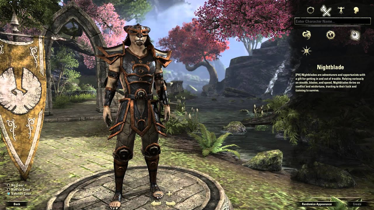 Teso Chevalier Mage Build