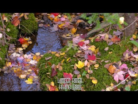 Winter River HIKING Trail PEI   Oct 2013