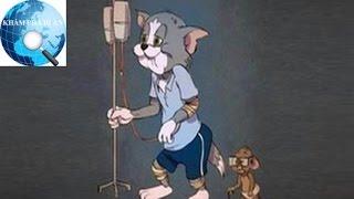 Có thể bạn chưa biết: Cặp đôi Tom & Jerry năm nay đã bước sang tuổi 76 rồi đấy!
