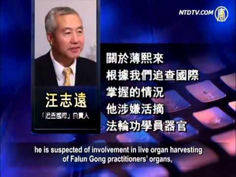 Xi Jinping And Li Keqiang Avoid Bo Xilai's Major Crimes