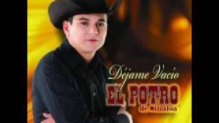 Y que les importa (audio) El Potro de Sinaloa