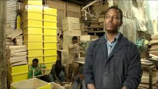 Ethiopian Farmers' Hope in Bee-keeping Business