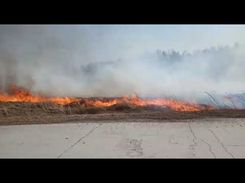27 пожаров потушили пожарные Искитима за пять дней