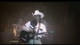 Vaquero de plastico (audio) Caballo Dorado