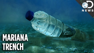 How Did The Deepest Part Of The Ocean Get So Polluted?