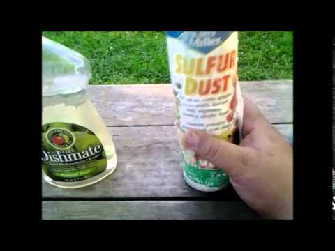 The pesticides I use in my garden