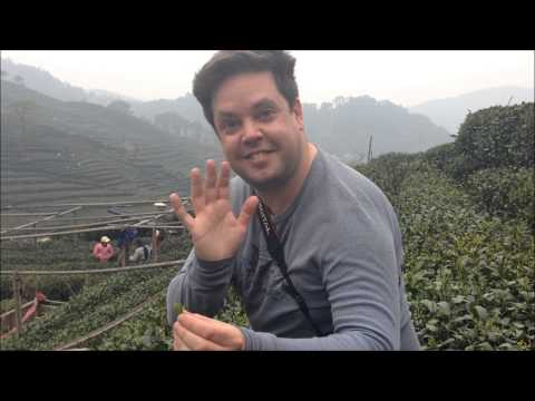 Mike Jutan in China: Picking Pre-Qingming Longjing Tea in Hangzhou