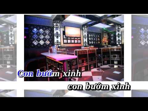 [Video Karaoke] Con bướm xuân - Hồ Quang Hiếu