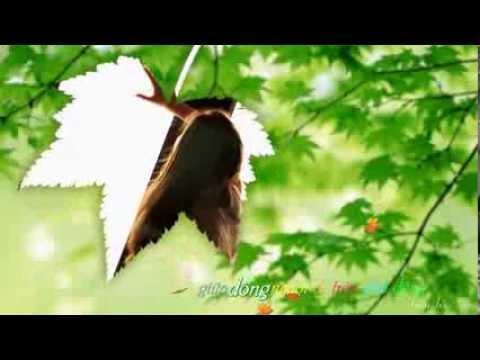 Chỉ Là Em Giấu Đi - Bích Phương ..||..Kara Video Lyrics