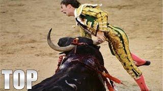 bull fighting midget