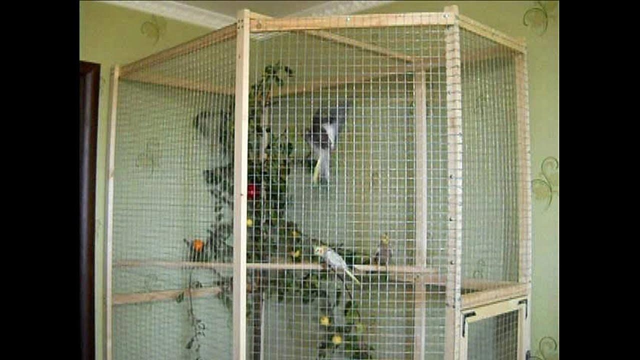 Делаем клетку вольер для попугаев (не отличишь от заводской).
