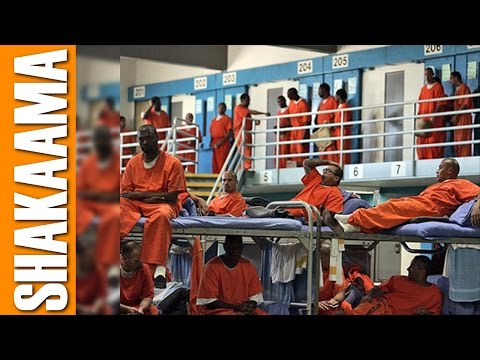 Black People Will End Up in Jail by the Millions Due to Obamacare's Health Insurance (PREDICTION)