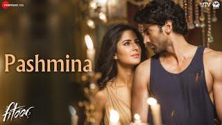 Pashmina Video Song, Fitoor movie,  Aditya Roy Kapur, Katrina Kaif hot images