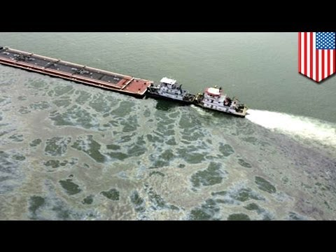 Texas Oil spill: cleanup operations close Houston ship channel