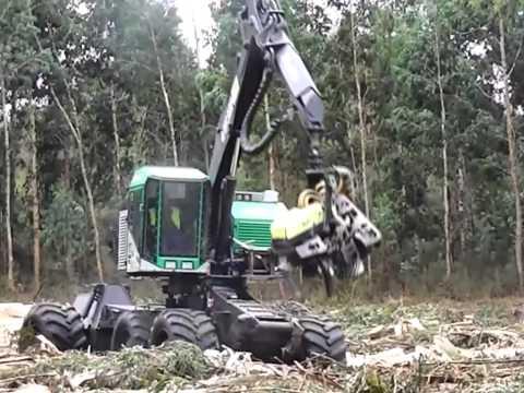AFM 60 Euca harvesting head on a TimberPro wheeled harvester