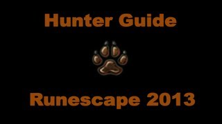 1-99 Hunter Guide Runescape 2014 Fastest XP And Money