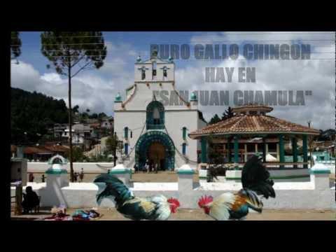CARTELES DE SAN JUAN (SOY DE SAN JUAN CHAMULA).wmv