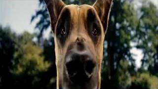 Trailer Filme Marmaduke Dublado Em Português