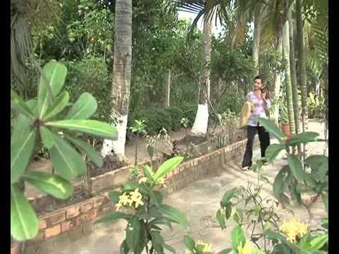 Đặc Sản Miền Sông Nước - Cá Chạch Kho Nghệ.flv