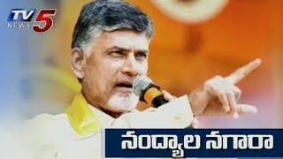 Watch: AP CM Chandrababu Punch Dialogues at Nandyal..