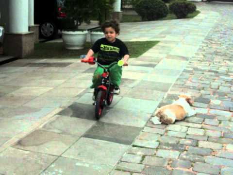 3 YEARS OLD KID RIDING BIKE PERFECTLY
