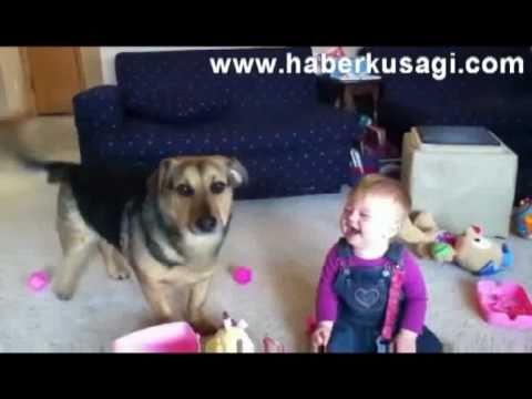 Komik Bebek ve Köpek İkilisi