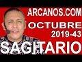Video Horóscopo Semanal SAGITARIO  del 20 al 26 Octubre 2019 (Semana 2019-43) (Lectura del Tarot)
