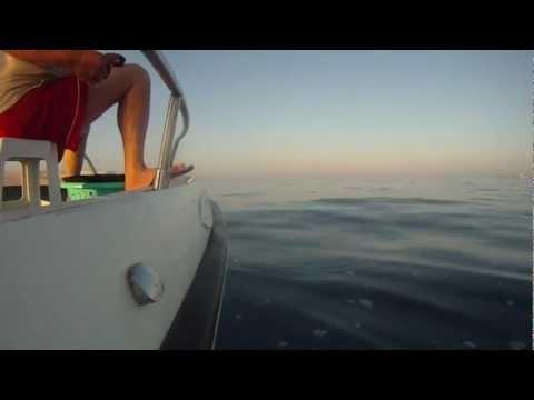 Longline fishing in Cyprus - Ψάρεμα με παραγάδι στην Κύπρο 07