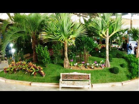 Curso Como Montar um Viveiro de Plantas Ornamentais - Espécies de Grande Porte